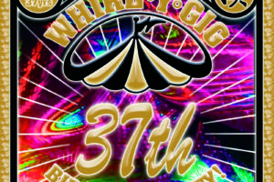 whirlygig 37th bday